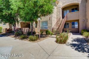 29606 N TATUM Boulevard, 119, Cave Creek, AZ 85331