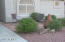 6934 S OAKMONT Drive, Chandler, AZ 85249
