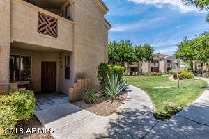 29606 N TATUM Boulevard, 171, Cave Creek, AZ 85331