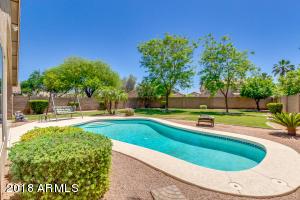 663 W CANARY Way, Chandler, AZ 85286