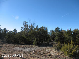 3914 N Sunset Ridge Loop Lot 139, Happy Jack, AZ 86024