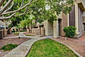 1905 E UNIVERSITY Drive, 117, Tempe, AZ 85281