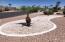 Beautiful Desert landscaping
