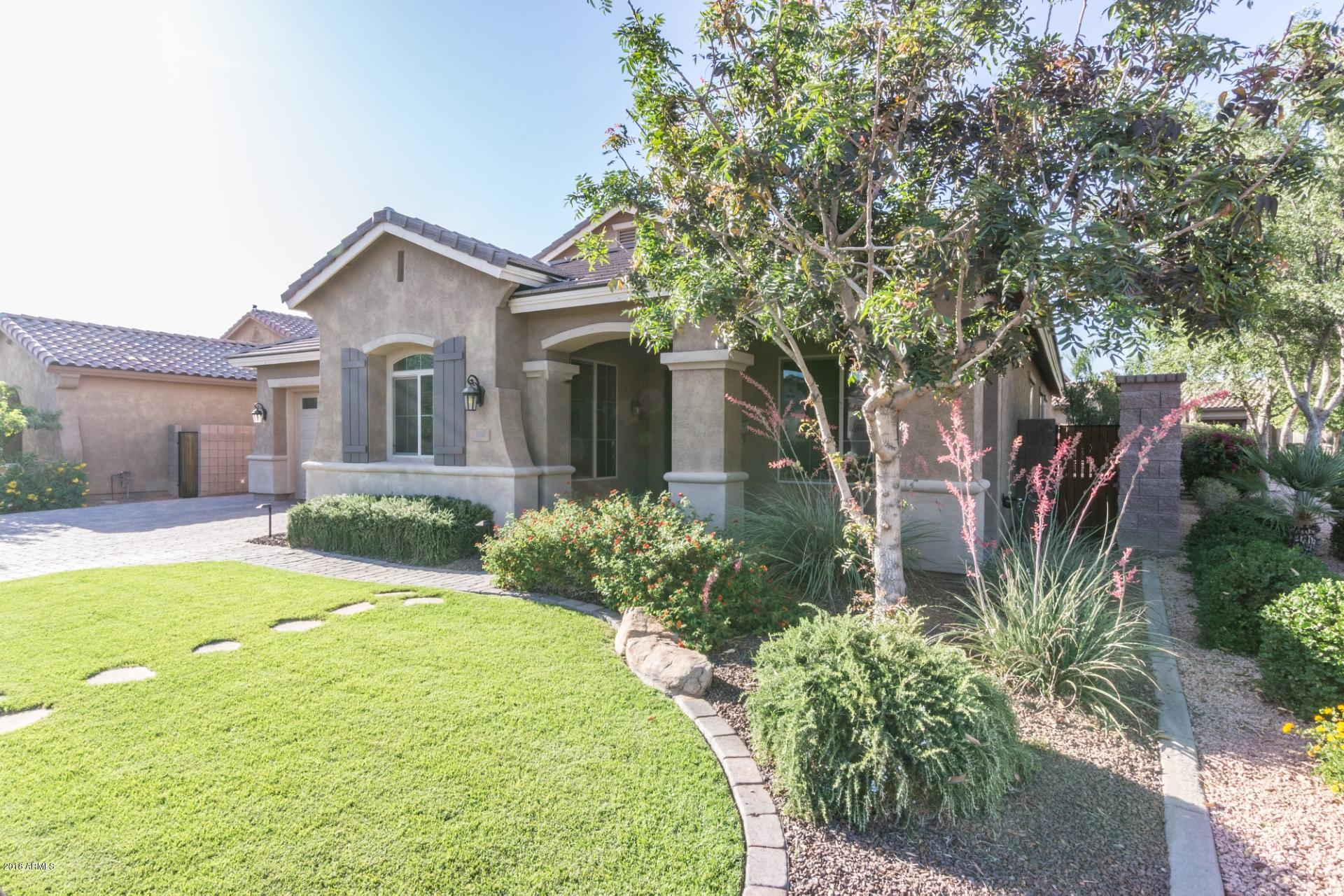 660 W GRAND CANYON Drive Chandler AZ 85248