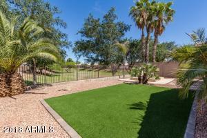2447 N 114TH Lane, Avondale, AZ 85392