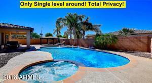 464 W AZALEA Drive, Chandler, AZ 85248