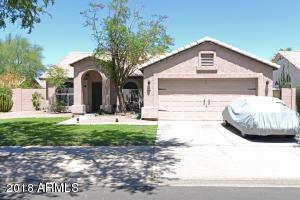 851 S EVERGREEN Street, Chandler, AZ 85225
