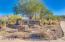 14956 N 114TH Place, Scottsdale, AZ 85255
