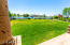beautiful large grass area located between pizza oven BBQ area and the pool/fire pit and second BBQ area / large enough for soccer if you put up two portable goals