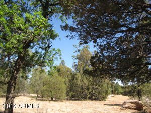 4270 MORNING VIEW Drive Lot 40, Happy Jack, AZ 86024