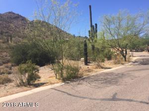 36540 N Conestoga Trail, 44, Cave Creek, AZ 85331
