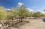 Acre lot with mature desert landscaping