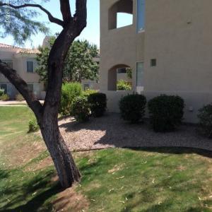 1747 E NORTHERN Avenue, 179, Phoenix, AZ 85020