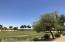 18505 W EVA Street, Waddell, AZ 85355
