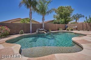 43599 W ELM Drive, Maricopa, AZ 85138