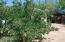 13661 S SPRING Lane, Mayer, AZ 86333