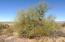 0 Jinglebob Road, 76, Wickenburg, AZ 85390