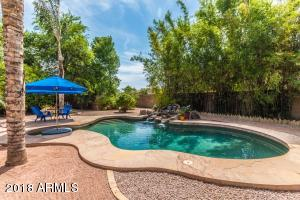 539 E CRESCENT Way, Chandler, AZ 85249