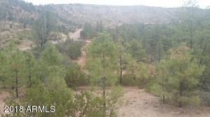 ± 2.54 ac E From 1105 FSR 512 Road, from 1P, Young, AZ 85554