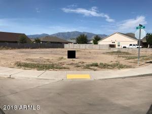 1055 W CHEROKEE Circle Lot 308, Safford, AZ 85546