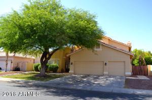 230 E Appaloosa Court, Gilbert, AZ 85296