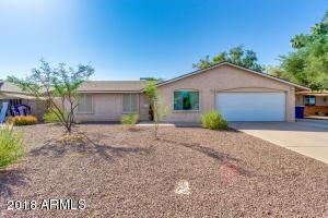 1610 W PALOMINO Drive, Chandler, AZ 85224