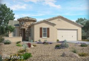 41635 W SNOW BIRD Lane, Maricopa, AZ 85138