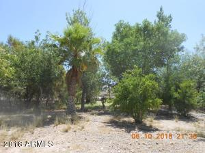 3672 S OVERTON Road Lot 199, Littlefield, AZ 86432