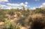 36601 N MULE TRAIN Road, 11B, Carefree, AZ 85377