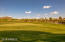 Community Golf Course views