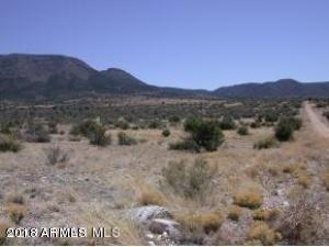 13625 E RINGTAIL Drive Lot 51, Prescott Valley, AZ 86315