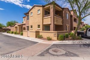 250 W QUEEN CREEK Road, 242, Chandler, AZ 85248