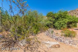 na E Joshua Tree Lane, 11, Scottsdale, AZ 85253