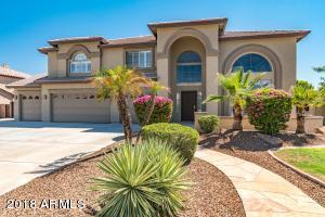 8033 W VILLA LINDO Drive, Peoria, AZ 85383