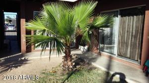 6712 W PALMAIRE Avenue, 4, Glendale, AZ 85303