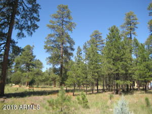 1822 SUGAR PINE Drive Lot 215, Happy Jack, AZ 86024