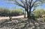 38940 N 54TH Street, 36, Cave Creek, AZ 85331