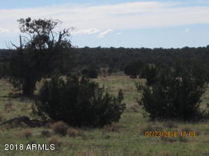 Parcel 689 Lot 689, Peach Springs, AZ 86434