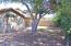 6935 W VIA DEL SOL Drive, Glendale, AZ 85310