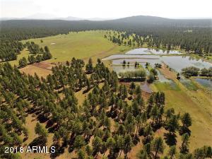 6929 E ROSILDA SPRINGS Road Lot 160 acres, Williams, AZ 86046