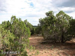 4982 Elk Trail Road, Clay Springs, AZ 85923