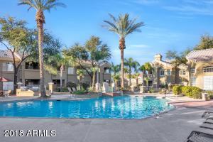 5335 E Shea Boulevard, 2056, Scottsdale, AZ 85254