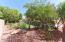 848 E Torrey Pines Place, Chandler, AZ 85249
