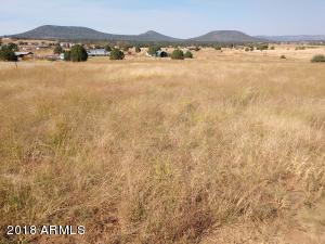 248 S Elk Ridge, A, Young, AZ 85554