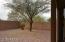 2303 W Firethorn Way, Anthem, AZ 85086