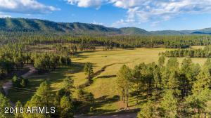 0 Beaver Creek FR 26, Alpine, AZ 85920