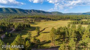 0 Beaver Creek FR, Alpine, AZ 85920