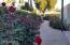 10678 E CINNABAR Avenue, Scottsdale, AZ 85258