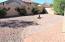 18197 E EL BUHO PEQUENO, Gold Canyon, AZ 85118