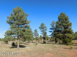 1977 RICOCHET RANCH Road, Clay Springs, AZ 85923